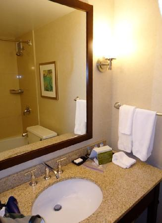DoubleTree by Hilton Chicago North Shore: Bathroom