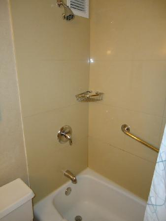 DoubleTree by Hilton Chicago North Shore: Shower