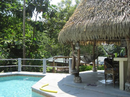 Coconut Grove Oceanfront Cottages: Pool bar..where we spent a lot of time...