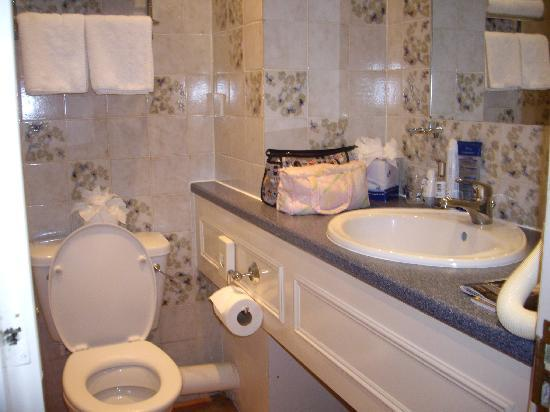 John Howard Hotel: baños
