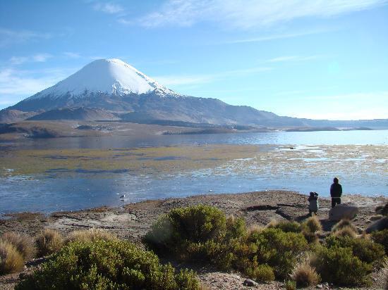 Arica, Chile: Lago Chungará, provincia de Parinacota