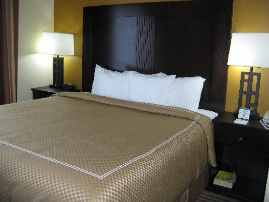 King bed picture of comfort suites north pflugerville for Comfort inn bedding