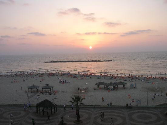 Dan Tel Aviv Hotel : The view from our room
