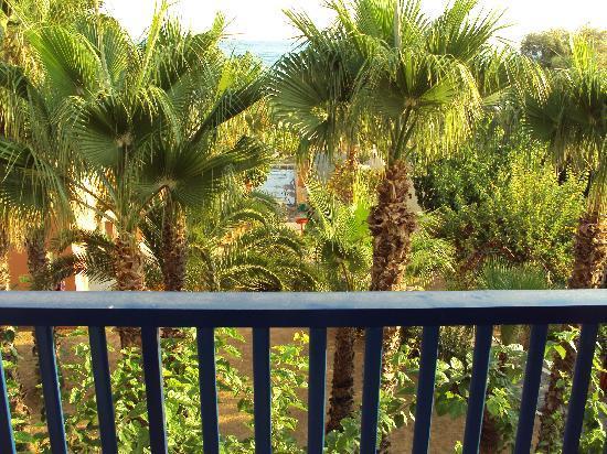 """Mare Monte Beach Hotel: Vue """"mer frontale"""" derrière les palmiers"""