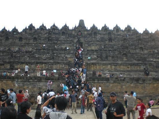 Borobudur Tours & Travel Picture