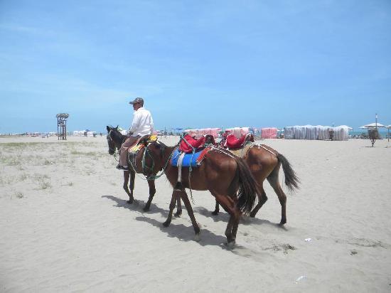 General Villamil Beach: caballos para pasear
