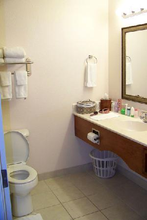 GrandStay Residential Suites Hotel Eau Claire: Bathroom was super clean and roomier than it looks in this photo.