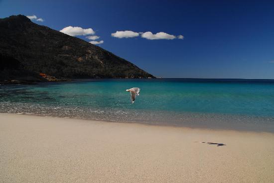 Freycinet Eco Retreat: Wineglass Bay