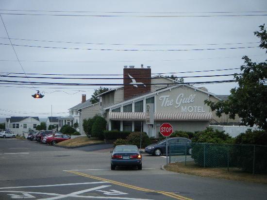 The Gull Motel, Inn and Cottages: vue du devant