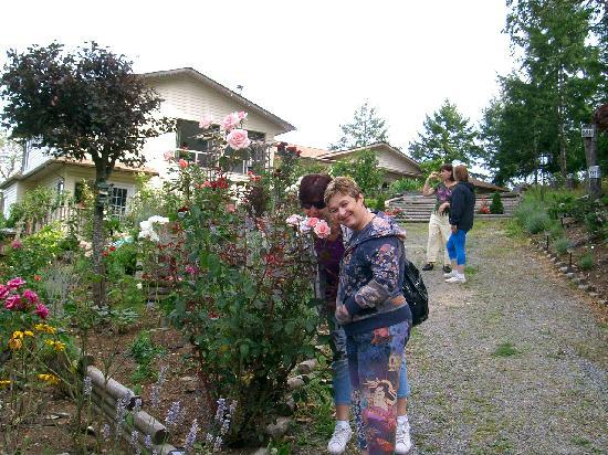 Armand Heights Bed and Breakfast : The Rose Garden