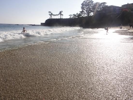 Laguna Beach Motor Inn: Beach