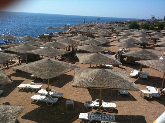 Viking Club: spiaggia resort viking