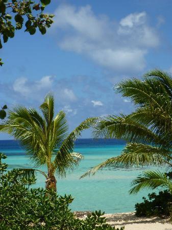 Matafonua Lodge: Resort's beach