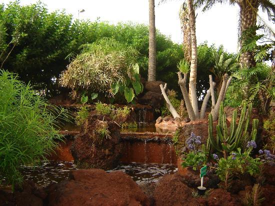 Beverly Park Hotel : jardin interior