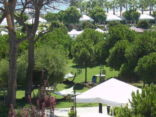 Susesi Luxury Resort : les jardins