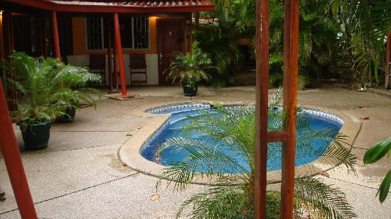 Fenix Hotel - On The Beach: Lush, green surroundings-sparkling clean pool