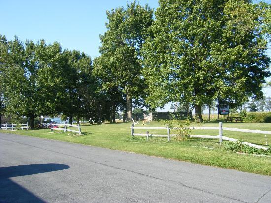 Amish Lanterns Motel: Motel grounds