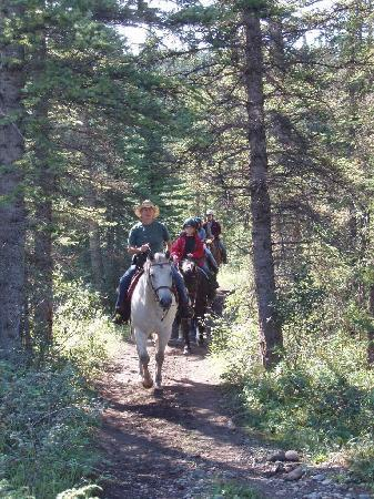 Old Entrance Trailrides: Orchard Creek Loop Ride