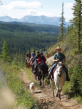 Old Entrance Trailrides: Athabasca River Valley