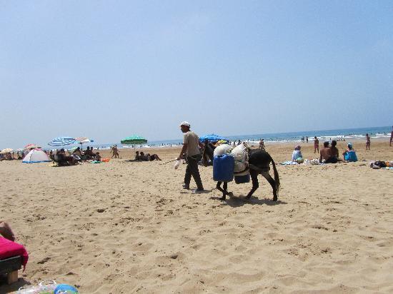 Asilah, Marokko: Paradise beach