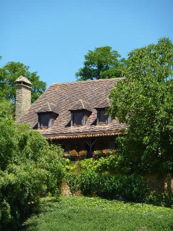 Le lys de Castelnaud blotti dans la verdure