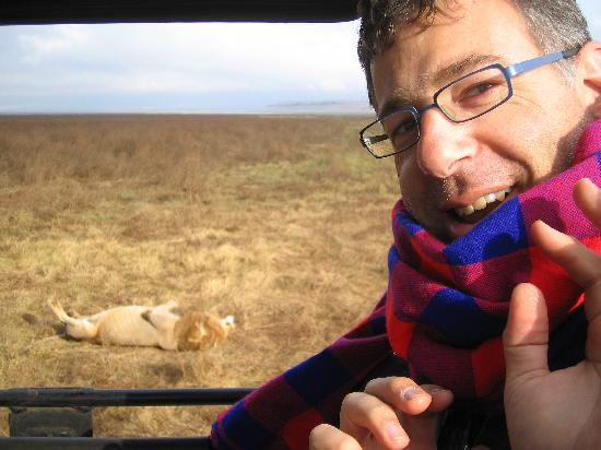 Lemala Ngorongoro Tented Camp: You get really close...