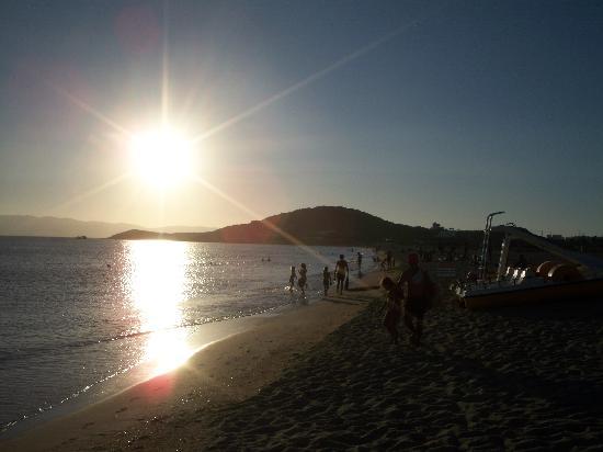 Hotel Villa Adriana: Spiaggia vicino hotel Vila Adriana - 2