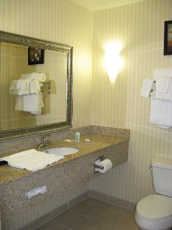 Comfort Suites Kildeer Drive: Bath