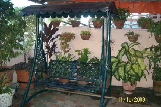 Cienfuegos, Cuba: Swing on Terrace