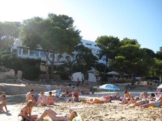 Hotel Cala d'Or : view of hotel from beach