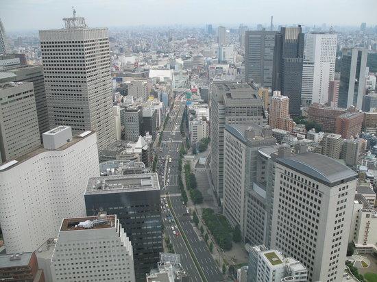 โรงแรมพาร์ค ไฮแอท โตเกียว: Vue de puis Park View King room