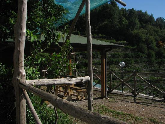 Agriturismo Il Campanile: Foto chiosco dell'area barbecue