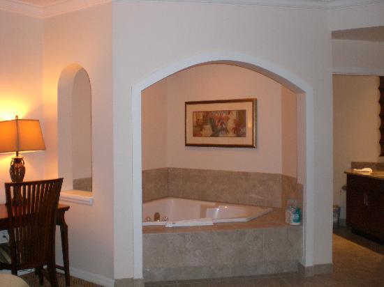 Sheraton Vistana Resort - Lake Buena Vista : Bath in the room!