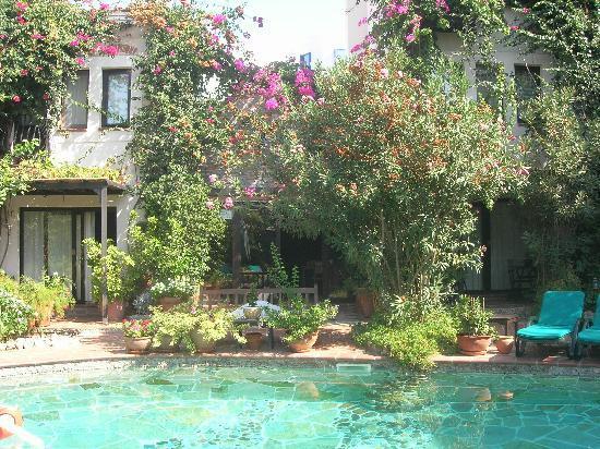 El Vino Hotel & Suites: Pool