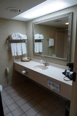 Holiday Inn Athens-University Area: Bathroom Vanity