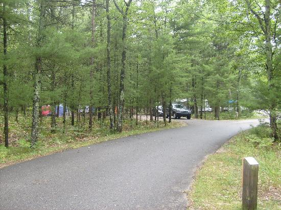 ‪‪Platte River Campground‬: camp site at the camp ground‬