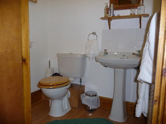 Grey Bull Hotel: The Grey Bull, bathroom