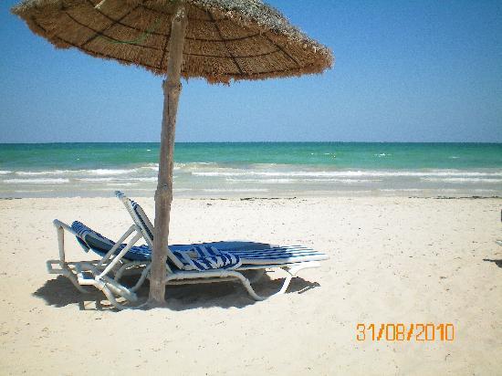 Hotel Al Jazira Beach & Spa : la plage