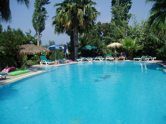 Garden Pansiyon: ample space around the pool