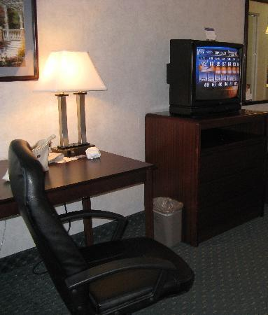 Hampton Inn Lancaster : King Room Furnishings