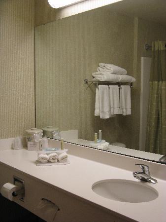 Holiday Inn Express Logan: Bathroom