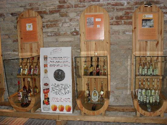 Royal Wine House and Wine Cellar Museum: Winecellar