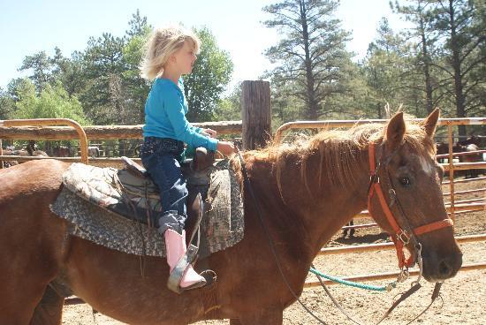 Deer Valley Ranch: horseback riding