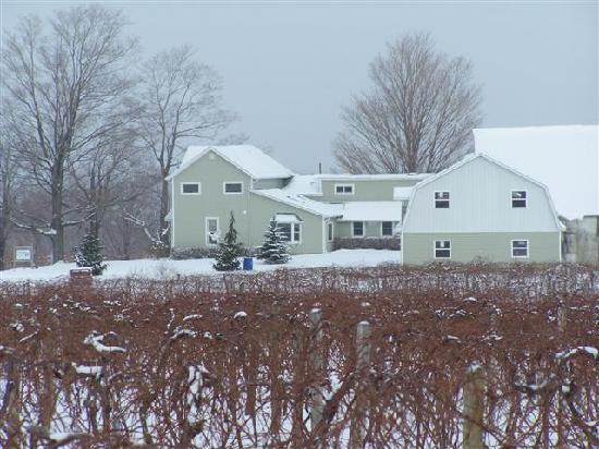 Contented Acres Bed & Breakfast: Wintertime at Contented Acres