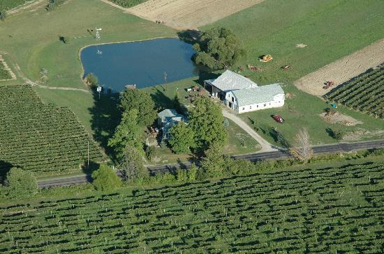 Contented Acres Bed & Breakfast: Contented Acres from the air