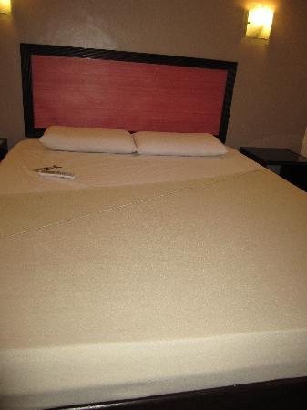 TOILENA room & board: bed