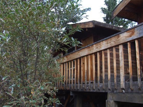 Denali River Cabins: Our Cabin