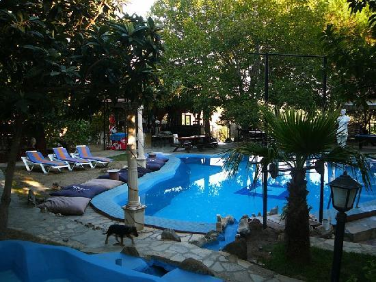 Atilla's Getaway: piscina