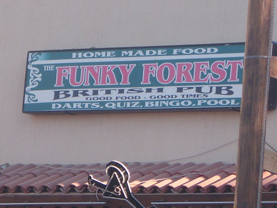 Funky Forest Bar