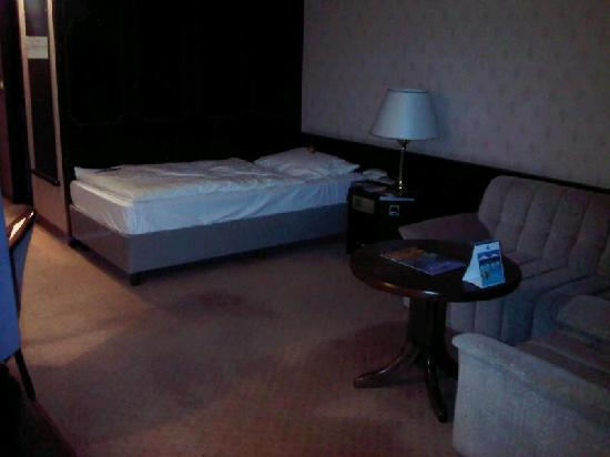 Maritim Hotel Bonn: Single room - bed